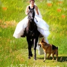 dog-of-the-bride-400x600